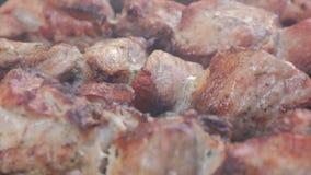 Närbilden marinerar shashlyk på en grillfest Rök över steknötkött på BBQ-galler arkivfilmer