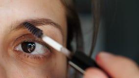 Närbildflickan applicerar smink och målar ögonbryn stock video