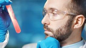 Närbildframsida av den säkra manliga chemic doktorn som ser på fördelning av rött blod i dryckeskärl arkivfilmer