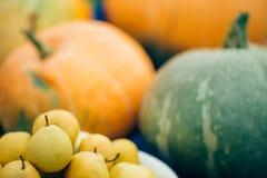 Närbildhöstskörd, frukter och grönsaker Mogna päron på bakgrunden av stora orange pumpor arkivbilder