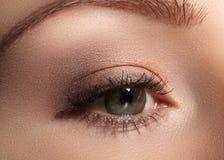 Närbildmakro av det härliga kvinnliga ögat med perfekta formögonbryn Ren hud, modenaturelsmink Bra vision arkivfoto