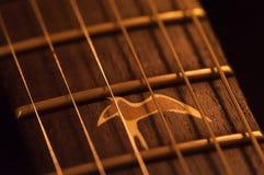 Närbildrader för akustisk gitarr, fingerboard fotografering för bildbyråer