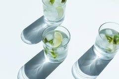 närbildsikt av den Gin Tonic coctailen i exponeringsglas arkivbilder