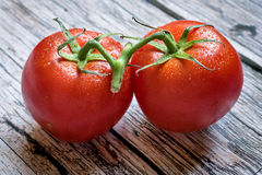 Närbildsikt av ett par av röda tomater på den wood tabellen Fotografering för Bildbyråer