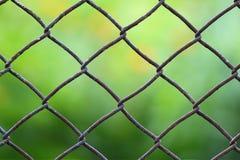 Närbildsikt av ett staket för chain sammanlänkning med mejad grön fältblurr Royaltyfri Fotografi