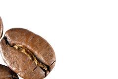 Närbildsikt av grillade kaffebönor Arkivfoton