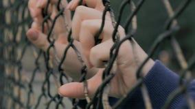 Närbildsikt av ung kvinnas händer som skakar metallingreppet på fäktat område Hjälplös kvinna som skakar ett metallstaket som för lager videofilmer