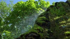 N?rbildsikt av vattenfallet i den bl?a lagun f?r djup skog Mest bra st?lle Loppet turnerar begreppet, naturlandskap arkivfilmer