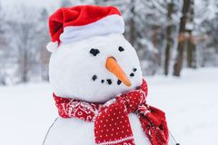 närbildsikten av den roliga snögubben i halsduk och den santa hatten i vinter parkerar Arkivfoto