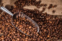 närbildskott av den spillda skopan och grillade kaffebönor royaltyfri bild
