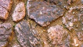 Närbildskott av stora stenar på stenlagd fyrkant Royaltyfri Foto
