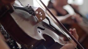 Närbildspelar träfiolen med lurendrejeri-pilbågen, musiker i orkesteren arkivfilmer