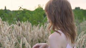 Närbildstående av en ung attraktiv rödhårig kvinna i ett fält med spikelets långsam rörelse arkivfilmer
