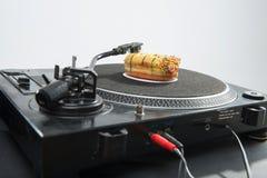 Närbildstående av munken som förläggas på vinylrekord Royaltyfria Foton