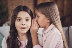 Närbildstående av två trevliga söta älskvärda attraktiva charmiga olika nyfikna flickabästa vän som delar hemligheter arkivfoto