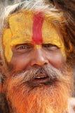 Närbildstående - Sadhu från Pashupati, Nepal arkivbild