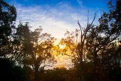 Närliggande Brisbane för havsikt stad i Queensland, Australien Australien är en kontinent som lokaliseras i den södra delen av jo royaltyfri foto