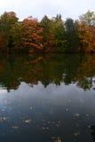 Närliggande sjö Teplice för höstträd Arkivfoto