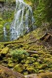 Närståendevattenfallet som applåderar över mossigt, vaggar royaltyfri fotografi
