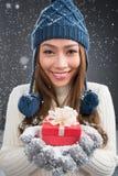 Närvarande vinter Royaltyfri Fotografi