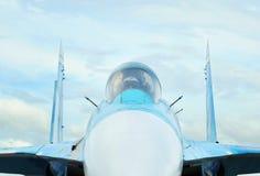 Näsa av Mikoyanen MiG-29 royaltyfri bild
