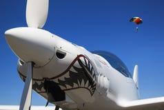 Näsa och propeller Royaltyfri Fotografi