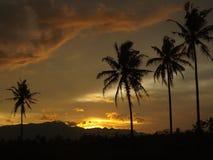 Nästan gryning med en orange himmel royaltyfri fotografi