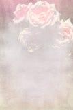 Nätt blom- texturerad bakgrund Arkivfoto