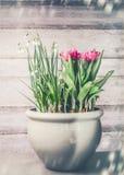 Nätt blommakruka med att blomma av tulpan och liljekonvaljen på träbakgrund, främre sikt Arbeta i trädgården för behållare Royaltyfri Fotografi