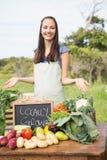 Nätt brunett som säljer organiska grönsaker Royaltyfria Bilder