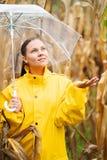 Nätt caucasian ung flicka i gult regnrockanseende i havrefält med det genomskinliga paraplyet Kvinnakontroller, om det är royaltyfria foton