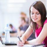 nätt deltagare för högskolakvinnligarkiv Royaltyfria Bilder
