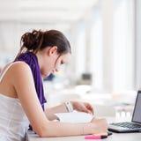 nätt deltagare för högskolakvinnligarkiv Arkivbilder