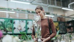 Nätt för plockningkruka för ung kvinna blomma med orkidén och att sniffa den Varuhus med gröna växter för hem- dekor och lager videofilmer