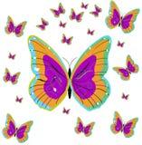 nätt fjärilar Arkivbild