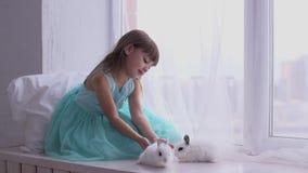 Nätt flicka som har gyckel, kramar och spelar med dekorativ kanin stock video