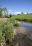 Nätt flod, England arkivbild