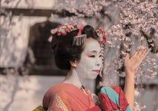 Nätt gullig japansk GeishaMaiko flicka i en kimono som framme poserar av ett traditionellt japanskt hous Arkivfoto