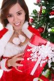 nätt kvinna för jul Fotografering för Bildbyråer