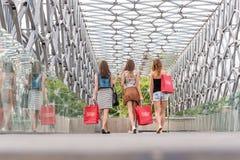 Nätt kvinna som 3 går på bron, går de att shoppa - det tillbaka fotoet arkivfoton