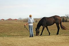 nätt kvinnabarn för häst Royaltyfria Bilder