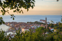 Nätt Pirano Piran stad i Slovenien Fotografering för Bildbyråer