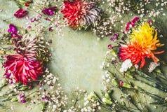 Nätt ram för sommarträdgårdblommor på grön bakgrund arkivfoton