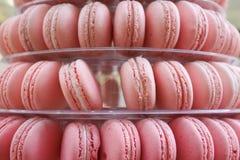 Nätt rosa franska Macarons arkivbilder