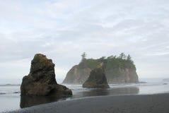 Nätt sikt av Ruby Beach, Washington Royaltyfri Foto