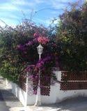 Nätt stolpe för vit lampa som omges av blommor och buskar Arkivbild