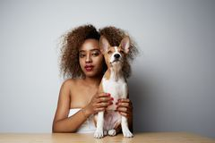 N?tt svart amerikan som ?r kvinnlig med afro h?r som kramar hennes valpbasenjihund F?r?lskelse mellan hunden och ?garen Isolerat  royaltyfri foto