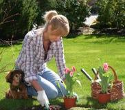 nätt trädgårdsmästare Arkivfoton