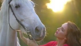 Nätt ung kvinna i röd klänning som smeker den behagfulla vita hästen på solnedgången Selet tystar ned hästen, man kvinna för hand arkivfilmer