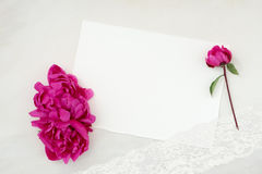 Nätt utformat brevpappermodellfotografi Arkivfoton